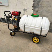 农场种植农作物打药机 果园高压远程喷药打药机 单缸柱塞泵打药机
