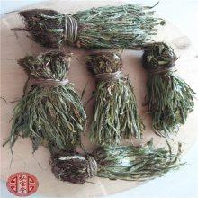 马灯草的药用价值 马灯草的功效马灯草的价格