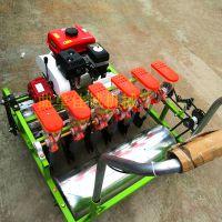 人力手推蔬菜播种机 汽油自走蔬菜精播机 可定制单粒下种
