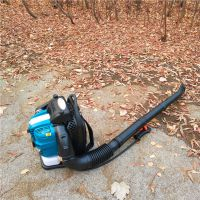 清除路面灰尘汽油吹风机 四冲汽油吹风机