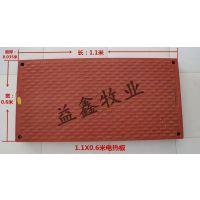复合电热板猪用母猪产床保育床BMC育肥板仔猪电热板