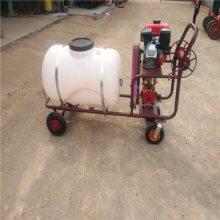 四轮高压喷雾器 风压高的汽油喷雾器低价定制