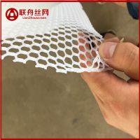 【联舟】厂家直销加厚塑料平网 漏粪养殖网 胶网格网