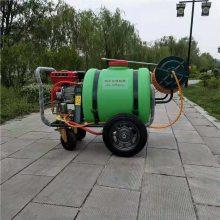 手推式园林绿化杀虫喷雾机 大容量汽油动力打药机 推车式高压远射程喷雾机