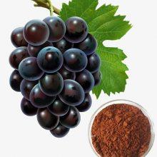 葡萄籽提取物原花青素食品级厂家直销