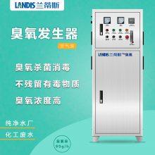 食品车间臭氧消毒灭菌机 臭氧发生器 车间水处理设备