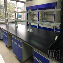 实验室试剂架 试剂柜 PP水槽实验台定做
