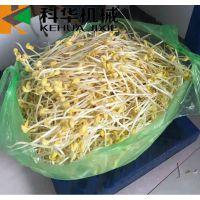 全自动厢式豆芽机生产厂家,生产豆芽的设备多少钱