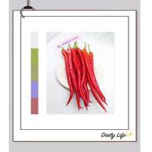 盛一奇辣美香二荆条 线椒种子 粗线 红线椒种子 鲜椒蔬菜种子