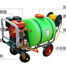 山东浩阳高压喷管清洗机 300L汽油园林洒水机 手推农作物农药喷雾器