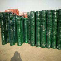 养殖场荷兰网 涂塑电焊网 绿色涂塑围网