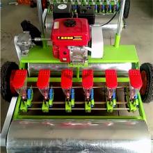 辣椒蔬菜穴盘育苗机 花卉用穴盘播种机 蔬菜花卉播种育苗机器