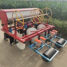 亚博国际真实吗机械 娃娃菜精量播种机 萝卜精量播种机 免耕地谷子播种机 价格