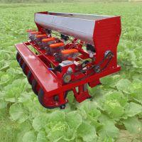 驰航2019新型拖拉机带动式多行香菜播种机 厂家直销气吸免耕精播机 山东谷子蔬菜播种机