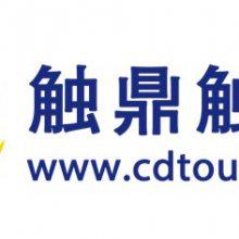 上海触鼎电子科技有限公司