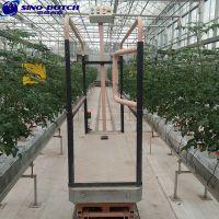 北京厂家直销温室采摘车轨道支架番茄立体栽培荷兰模式使用