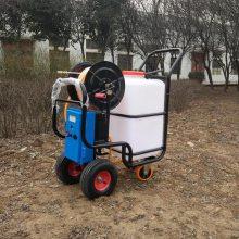 热卖饲养场消毒喷药机 推车式电动喷药机 果园菜园灭虫打药机