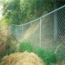 勾花网护栏网 菱形网包塑网定制加工常规有现货