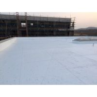 供应瑞士西卡防水卷材(西卡渗耐屋面PVC防水卷材)