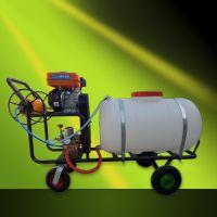 亚博国际真实吗机械 厂家热销园林电动手推式喷雾器 100L电动手推打药机 汽油高压打药机机械