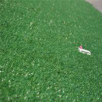 人工草坪价格 铺地草坪 工程绿化草坪