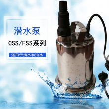 CSS-250清水潜水泵家用花园浇灌积水排水泵
