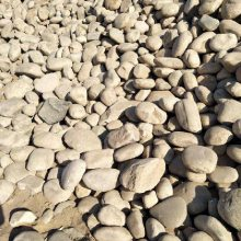 河北衡水3-5厘米五彩鹅卵石批发,衡水鹅卵石批发