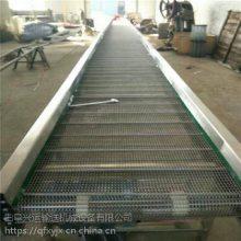 台湾不锈钢网带输送机 食品输送机