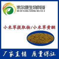 小米草黄酮 20%含量 小米草提取物 天然植物提取原料粉 量大从优