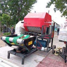 全自动青储秸秆打包机 玉米秸秆打捆包膜机 自走式铡草压块机