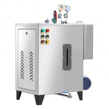 电蒸汽锅炉 全自动立式电蒸汽发生器 节能环保性能高