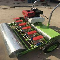 宏程厂家特销蔬菜播种机 拖拉机牵引蔬菜播种机 手推汽油蔬菜精播机