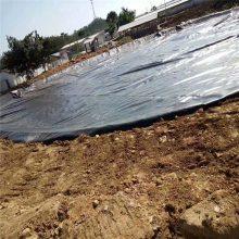 填埋场防渗1.5mm聚乙烯土工膜 热熔焊接