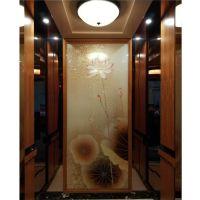 家用电梯制造-杏林伟业-家用电梯