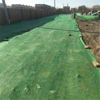 密织盖土防尘网 建筑用盖土网 工程盖土网大量库存