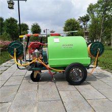 热卖公园绿化打药机 手推式消杀喷雾器 高压汽油四冲程喷雾器