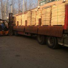 淄博硬杂木 杨木加工厂 杨木托盘料