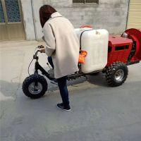 500米长拉管喷雾器价格 推车式果园高射程打药机 慧聪机械花生地小型推车式价格1