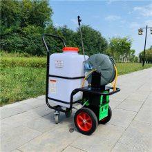 手推60升自动回管打药机 喷洒均匀雾化好打药机 城市绿化高压喷雾机