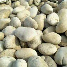 河北唐山2-4cm鹅卵石价格