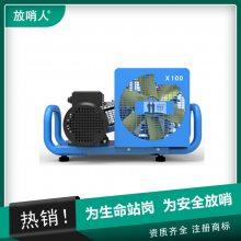 MSA 100TE空气呼吸器填充泵10181241 三相电源400v 100L/min