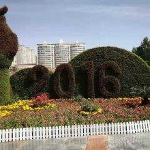 成都大型仿真植物绿雕厂家 定制各种佛吉草五色草主题雕塑出售