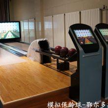 保龄球设备 模拟保龄球 数维亿润保龄供应