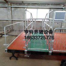 热镀锌母猪产床漏粪板/定位栏养猪设备厂家