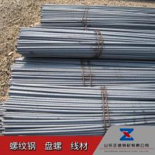 济南HRB400E螺纹钢现货供应 HPB300线材盘圆盘条品种多