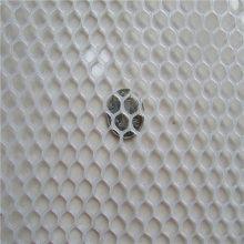 白色养殖网 纯料养殖网 养殖塑料平网
