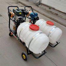 汽油推车式打药机 华晨绿化带喷洒机 HC-DYJ猪场消毒喷雾打药机