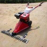 现货手推小型果园除草高效割草机 汽油动力剪草机