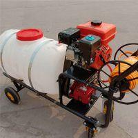 果蔬大鹏新型打药机 宏程喷药机厂家 推车式高压喷雾器