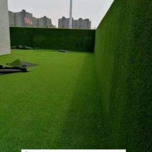 草坪哪家强